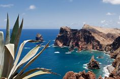 Madeira Cliffs - Image & Photo by Karl Watson from Madeira - Photography (10449365) | fotocommunity