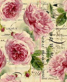 English.Roses.02.of.02