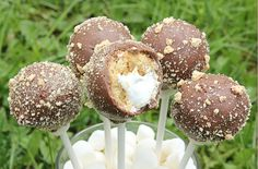 MBC: S'mores Cake Pops - Can't wait to make these! << they kinda cheat with a cakepop maker...but look yummy