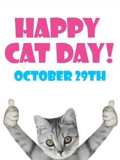 Best National Cat Day Cards Ideas 20 Articles And Images Curated On Pinterest In 2020 National Cat Day Cat Day Cards
