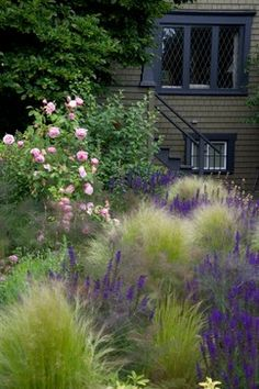 Kitsilano Front Garden - contemporary - landscape - vancouver - CYAN Horticulture