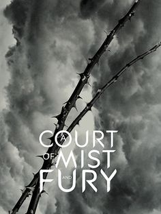 "chainsaw-assassin: "" A Court of Mist and Fury by Sarah J. Maas ""Feyre survived Amarantha's clutches to return to the Spring Court–but at a steep cost. Though she now has the powers of the High Fae,..."