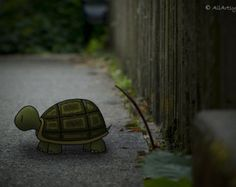 Turtle Crossing 8x10 matted print