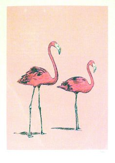 Pink FlamingoesBY JAMES NIELSEN / VIEW MORE