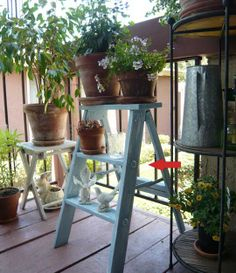 Flickr Find:  Mari's Step Ladder. Great idea for potted herb garden and raising seedlings in a small space.