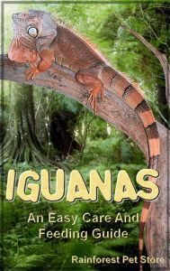 Title: Iguanas: An Easy Care and Feeding Guide, Author: Rainforest Pet Store