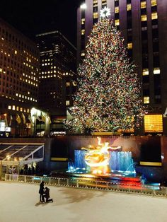 Take me to New York during Christmas time and propose; have someone take pictures of it. ❤️