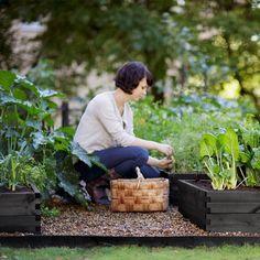 Dyrk grøntsager i højbede i baghaven Højbedet rummer stor jordvolume og og sikre en højre jordtemperatur så du kan starte dyrkningssæsonen tidilgere. Højbedet er sammentappede sortbejset fyr og giftfri selvfølelig. Pæne nemme at samle og kan stables. PRE-SALG RABAT 15% denne måned  fri fragt over 500:- >> link i profilen  #hasselforsgarden #urbangardening #justaddwater #urbangard #urbangardencompany  #dyrkbyen #byhave #raisedbeds #growyourown #growfood #slowfood #altanliv #altanhave #terasse…