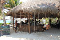Ziggy Beach Club | Eco-Tourism Experiences