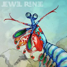 How lovely is this? Jewel Renee makes lovely animal illustrations, including the unofficial mascot of the colour course, a Peacock Mantis Shrimp. Thanks, Danielle, for the lead!