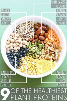 What are the best plant protein foods and just how much protein is in each? Almo… What are the best plant protein foods and just how much protein is in each? Almonds, chickpeas, quinoa, a seasoning that subs for cheese – and more! Lentils Protein, Plant Based Protein, Plant Based Diet, Good Protein Foods, Vegan Protein Sources, Vegetarian Protein, Healthy Eating Guidelines, Healthy Eating Recipes, Healthy Meals