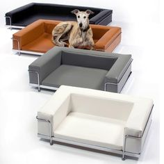 Leather_Vinyl_Le_Corbusier_Dog_Sofa_1024x1024
