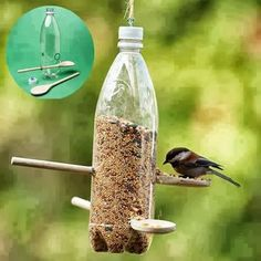 Pet Bottle Bird Feeder #recycle
