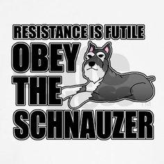 The schnauzer has spoken!