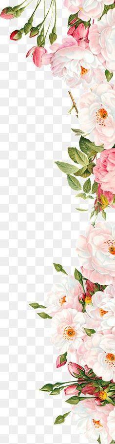 Flores de color rosa, Pink, Flores, Bud PNG Image and Clipart Clip Art Vintage, Cute Wallpaper Backgrounds, Flower Backgrounds, Wreath Watercolor, Watercolor Flowers, Flower Png Images, Page Borders Design, Background Decoration, Flower Graphic
