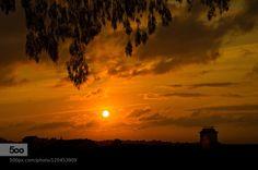 sunrise by ruiejoao  ajuda beautiful city down lisboa morning portugal sky summer sun sunrise travel trees sunrise ruiejo