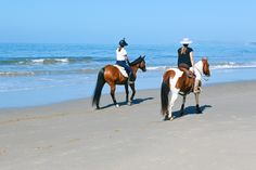 Horses walking on the beach Beach Walk, Beach Trip, Adventure Bucket List, Moving To California, New Environment, Time Shop, Horseback Riding, Equestrian, Travel Destinations