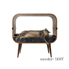 Midcentury modern cat furniture by cairudesign on Etsy Modern Cat Furniture, Pet Furniture, Vintage Furniture, Furniture Design, Cat Climbing Tree, Cat House Diy, Wood Cat, Cat Room, Dog Bed