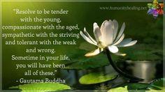 Resolve to be tender... ~Buddha
