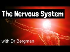 If you have Radial nerve entrapment syndrome use the exercises in this video to floss, mobilize, and release this nerve from its surrounding tissues.