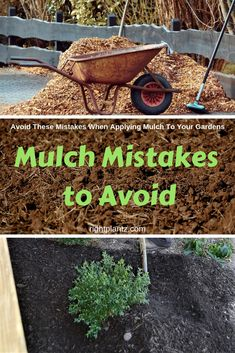 Mulch is to the garden what cleaning out the closet is to your home; a spring right of passage. There is no debating the many benefits mulch provides to your plants and gardens: But, installed… Mulch Landscaping, Front Yard Landscaping, Pine Straw Landscaping, Mulch Yard, Wood Chips Landscaping, Black Rock Landscaping, Diy Landscaping Ideas, Decorative Rock Landscaping, Landscaping Around Trees