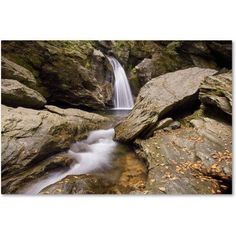 Trademark Fine Art 'Over and Under' Canvas Art by Michael Blanchette Photography, Size: 12 x 19, Assorted