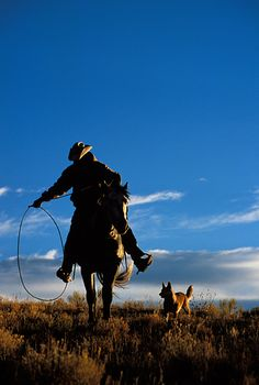 All you need is a good rope and a faithful dog.