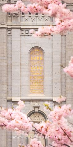 10 Spring Pictures of the Salt Lake Temple You Haven't Seen Yet - LDS Temple Pics Lds Temple Pictures, Lds Pictures, Pictures Of Christ, Church Pictures, Spring Pictures, Mormon Temples, Lds Temples, Salt Lake City, Later Day Saints