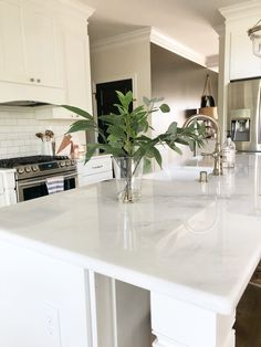 All About Our Countertops: Quartzite, Quartz and Marble Sharing the variety of countertops used in our home and why we chose them. The post All About Our Countertops: Quartzite, Quartz and Marble appeared first on Decorkate. Countertop Concrete, White Quartzite Countertops, Counter Tops Quartz, Quartzite Kitchen Island, Kitchen Islands, New Kitchen, Kitchen Decor, Kitchen Ideas, Countertops For Kitchen