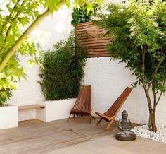 érable du Japon dans un jardin zen japonais