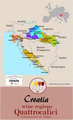 All about Croatia wines on Quattrocalici. Wine Education, Wine And Beer, Fine Wine, Wine Country, Bartender, Wine Recipes, Bujo, Champagne, Protein