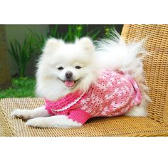 Handmade Dog Dresses Pink Dog Clothes Dog Couture by myknitt. $25.00 USD, via Etsy.