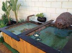 Paludarium fishy business pinterest - Estanque para tortugas ...