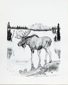 Moose S/N Limited Edition Print of pen and by PlayofLightFineArt, $35.00