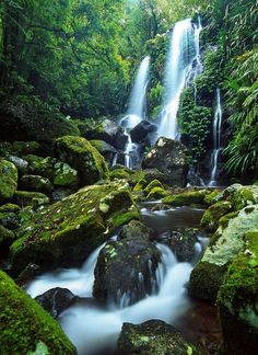 Chalahn Falls, Lamington National Park, Queensland, Australia  by Mark Wassell on 500px