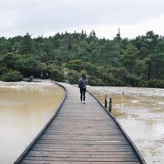 Another one from Waiotapu Thermal Wonderland because wai-not  #punintended #rotorua #waiotapu #thermalwonderland #newzealand #nz #newzealandfinds #discovernewzealand #maorivillage #lblogger #australianblogger #travel #traveldiary #instatravel #travelgram #travelblogger #itsthattimefor