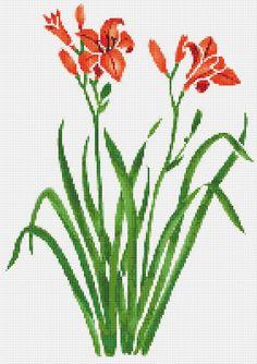 Orange Tiger Lily Cross Stitch Pattern Flower by xstitchpatterns