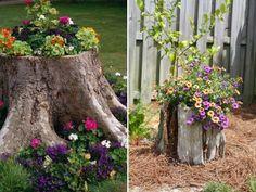 Des troncs d'arbres en guise de pots de fleurs