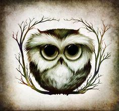 The OWL by Anuk.deviantart.com