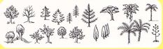 child-tree-symbols_med_hr.jpeg (600×183)