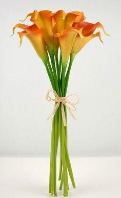 orange calla lilly
