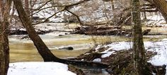 Johnston Mill Nature Preserve  triangleland.org