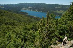 Parco Nazionale della #Sila #Calabria