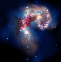 A beautiful new image of two colliding galaxies has been released by NASA's Great Observatories. The Antennae galaxies, located about 62 million light-years from Earth, are shown in this composite image from the Chandra X-ray Observatory (blue), the Hubble Space Telescope (gold and brown), and the Spitzer Space Telescope (red).
