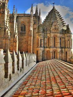 Torre del Gallo Catedral de Salamanca  Spain