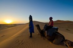 Another Camel Riding Tour Option