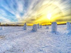 Circle of life   #europe  #instafinland  #järvenpää  #travel  #alltags_member  #traveling  #loves_finland  #finnishboy  #finland_photolovers  #landscape_lovers  #finland4seasons  #travelphotography  #instatravel  #finland_frames  #igscglobal  #fotofanatics_nature_  #thisisfinland  #discoverfinland  #igscandinavia  #ig_week_finland  #Loves_United_Finland  #fotofanatics_alltags_  #finnishmoments  #lovelyfinland  #thebestoffinland  #nature  #visitfinland  #unlimitedscandinavia  #beautyofsuomi…