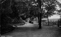Gezicht op een wandelpad in het Julianapark te Zuilen.  N.B. Het Julianapark is per 1 januari 1954 bij de gemeente Utrecht gevoegd