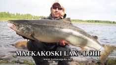Matkakoski Salmon Fishing - Beautiful mornings and  Big Salmon. #tornionjoki #matkakoski #spinfluga #spinfly #salmon #lohi #lax #salmonfishing #riverbug #putkiperhot #lohenkalastus #laxfiske #kalastus #fiske #tornio #torneälv #lohensoutu #finnlures #finland #sweden #river #rivefishing #stream #boatfishing #shorefishing #sportfishing #punttikalastus #tubefly #tubfluga #flytying #flyfishing #travel #visitfinland #DIY #perhokalastus #laks #kukkolankoski #kattilakoski #fish #summer #寿司 #フィンランド… Sport Fishing, Fishing Boats, Fly Fishing, Visit Sweden, Salmon Fishing, Beautiful Morning, Fly Tying, Finland, River
