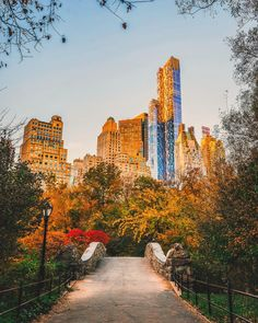 One of my favorite views from The Gapstow Bridge @centralparknyc